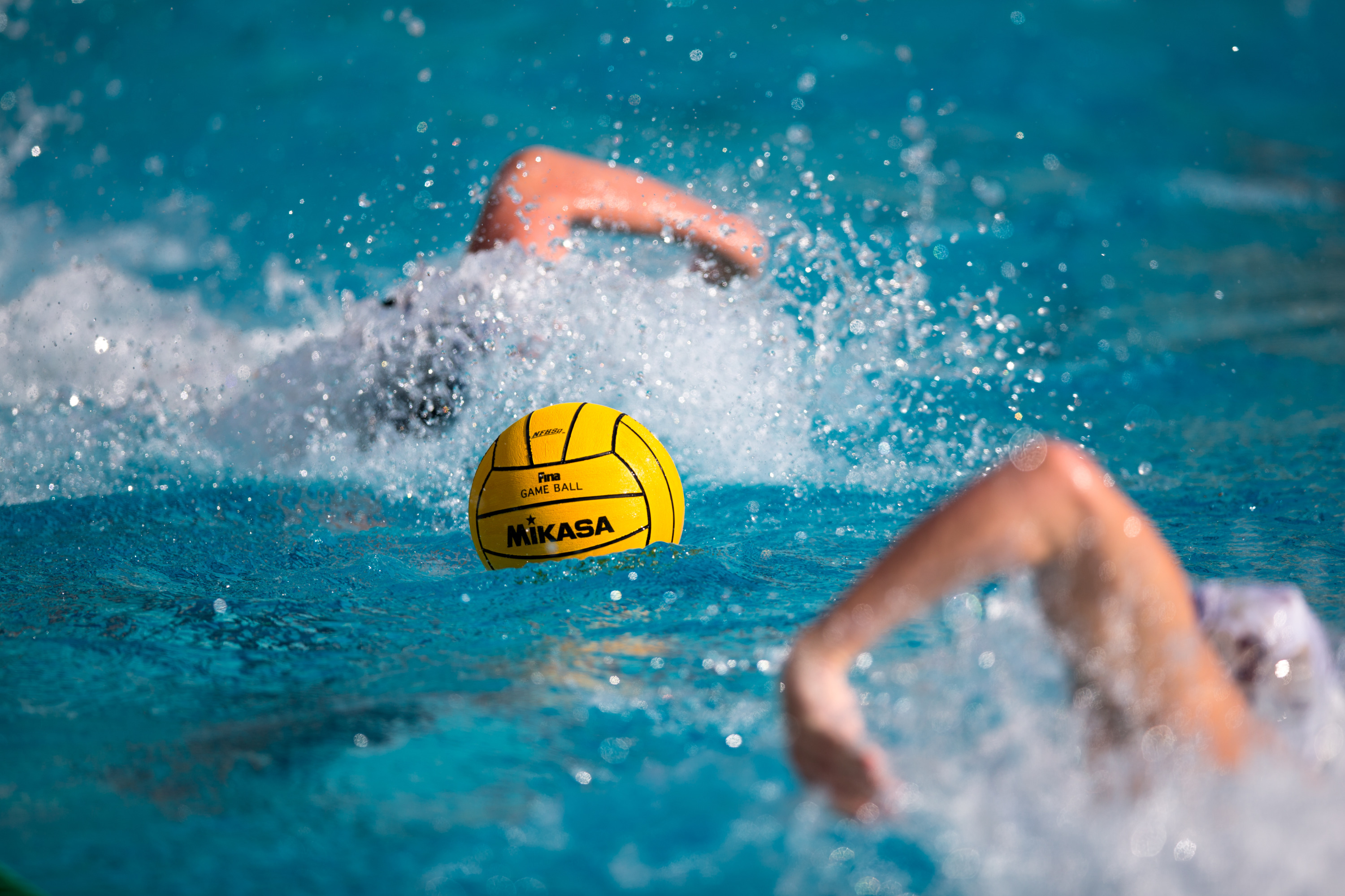 f4eff3be4 The 2015-2016 USA Water Polo Academic All-Americans have been announced